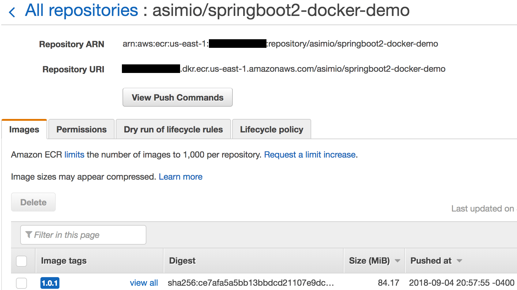 Pushing a Docker image to an AWS ECR repository